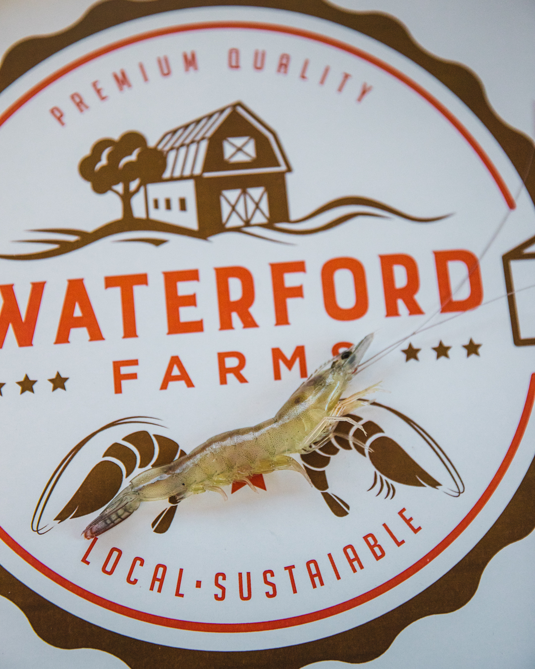 Thousands of miles from the nearest ocean, a sustainable seafood